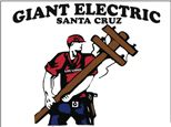 Giant Electric